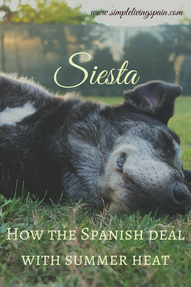 Siesta! How the Spanish deal with hot weather  | Simple Living in Spain