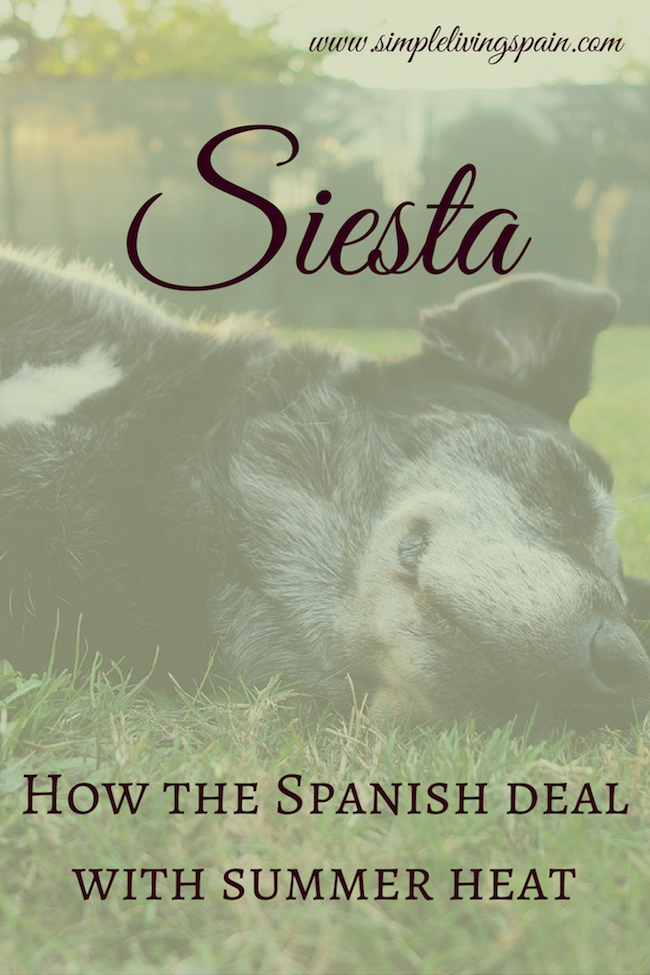 Siesta! How the Spanish deal with summer heat   Simple Living in Spain