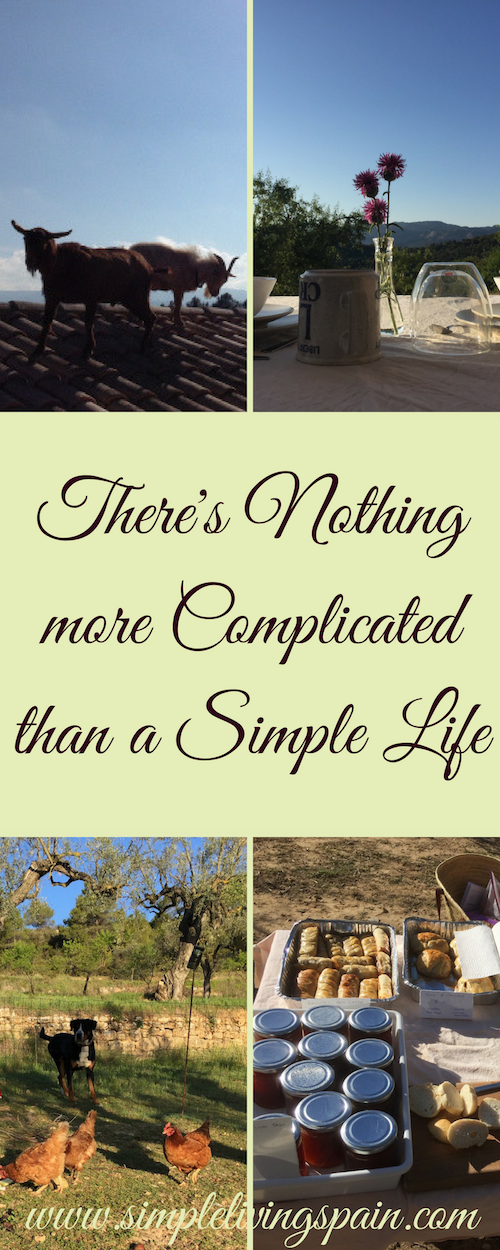 There's nothing more complicated than a simple life | Sunny Simple Living