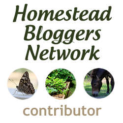Simple Living in Spain is a Homestead Bloggers Network Contributor