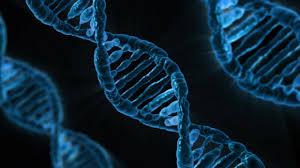 Genetic Diagnotics