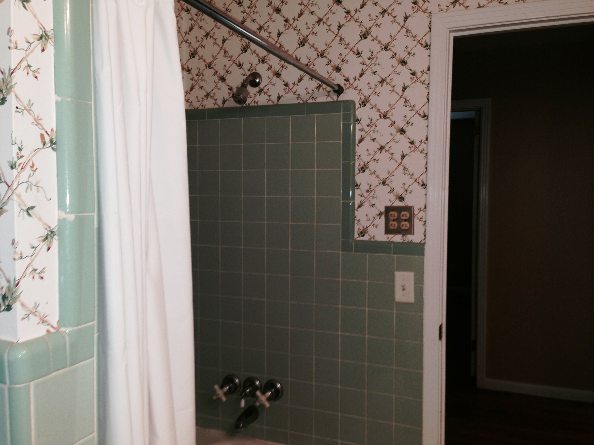 guest bath shower.jpeg
