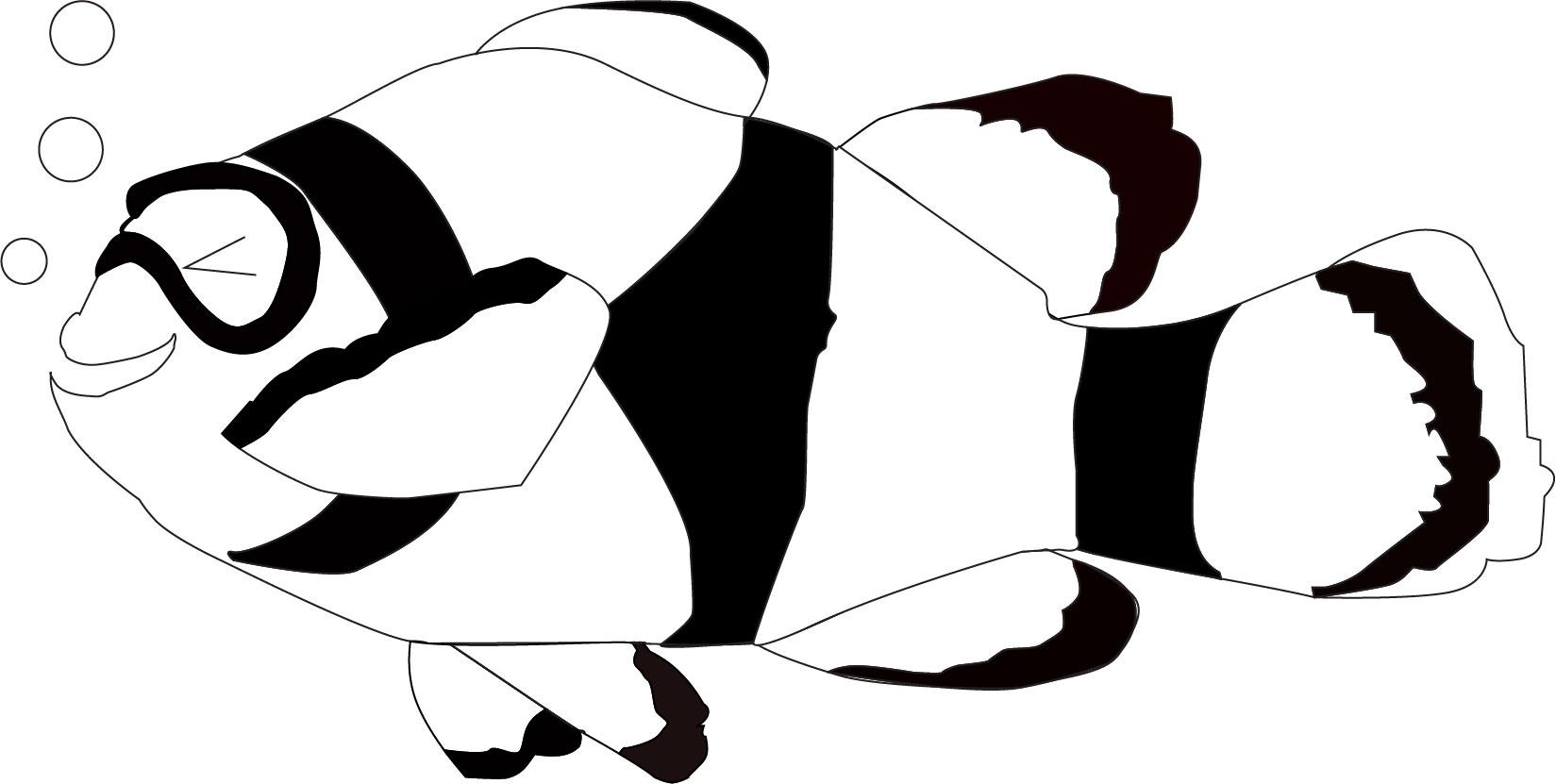 clown-fish-illustration.jpg