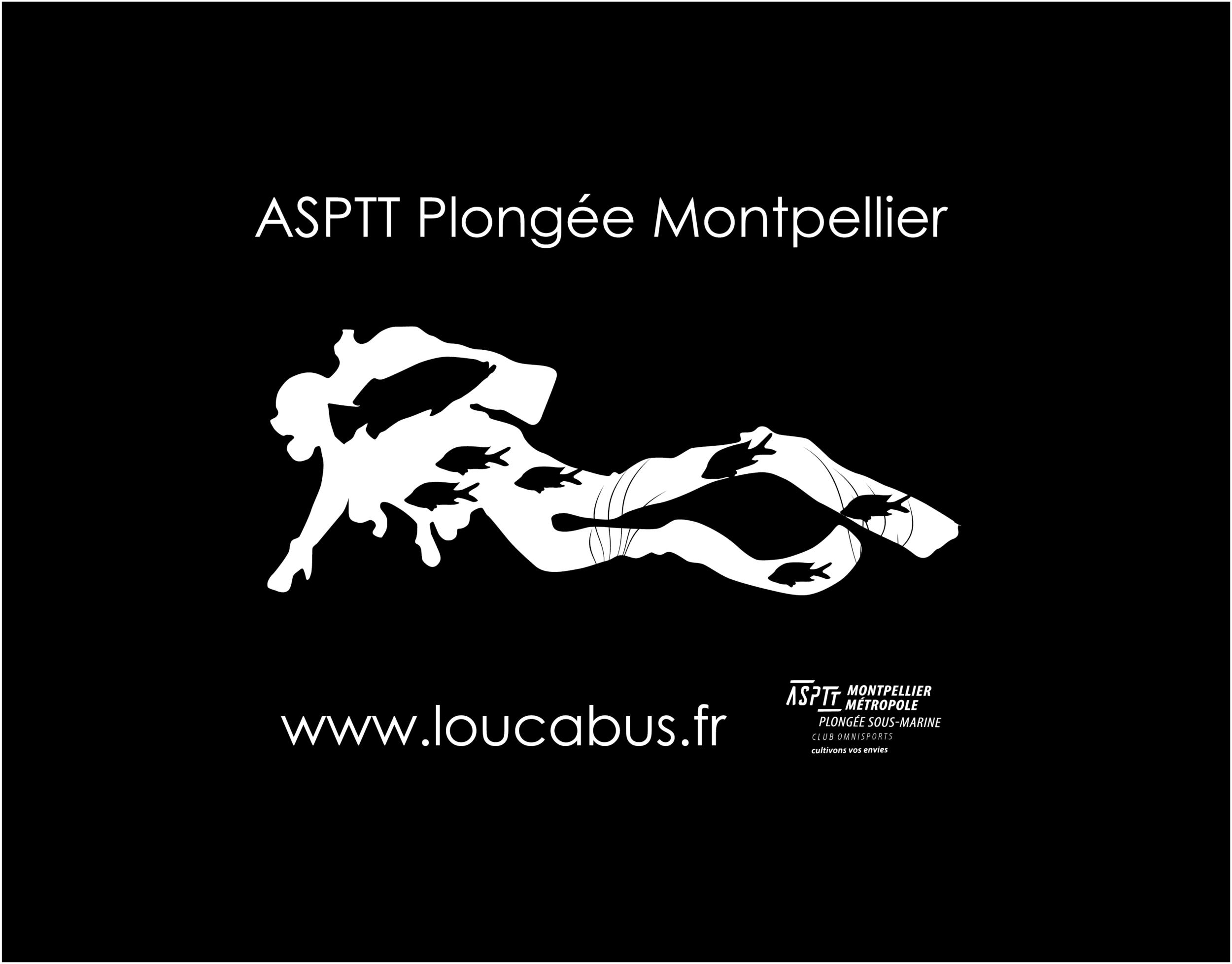 Plongeur.png