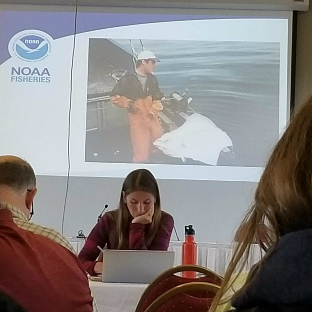 Highly ironic photo of DSFU member John Adams that was used by NMFS during the June 5th community meeting last night to hear from fishermen in the community about their thoughts regarding IFQ (Photo: Walter McQuillen).