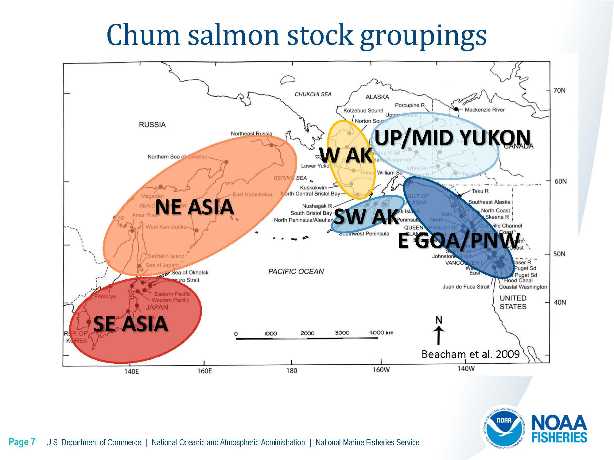 DownloadFile  GOA Chinook Salmon Stock Composition Report.pdf_Page_14_Page_07.jpg