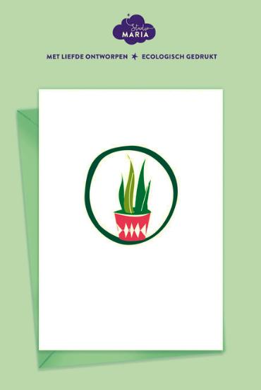 postkaart sansevieria