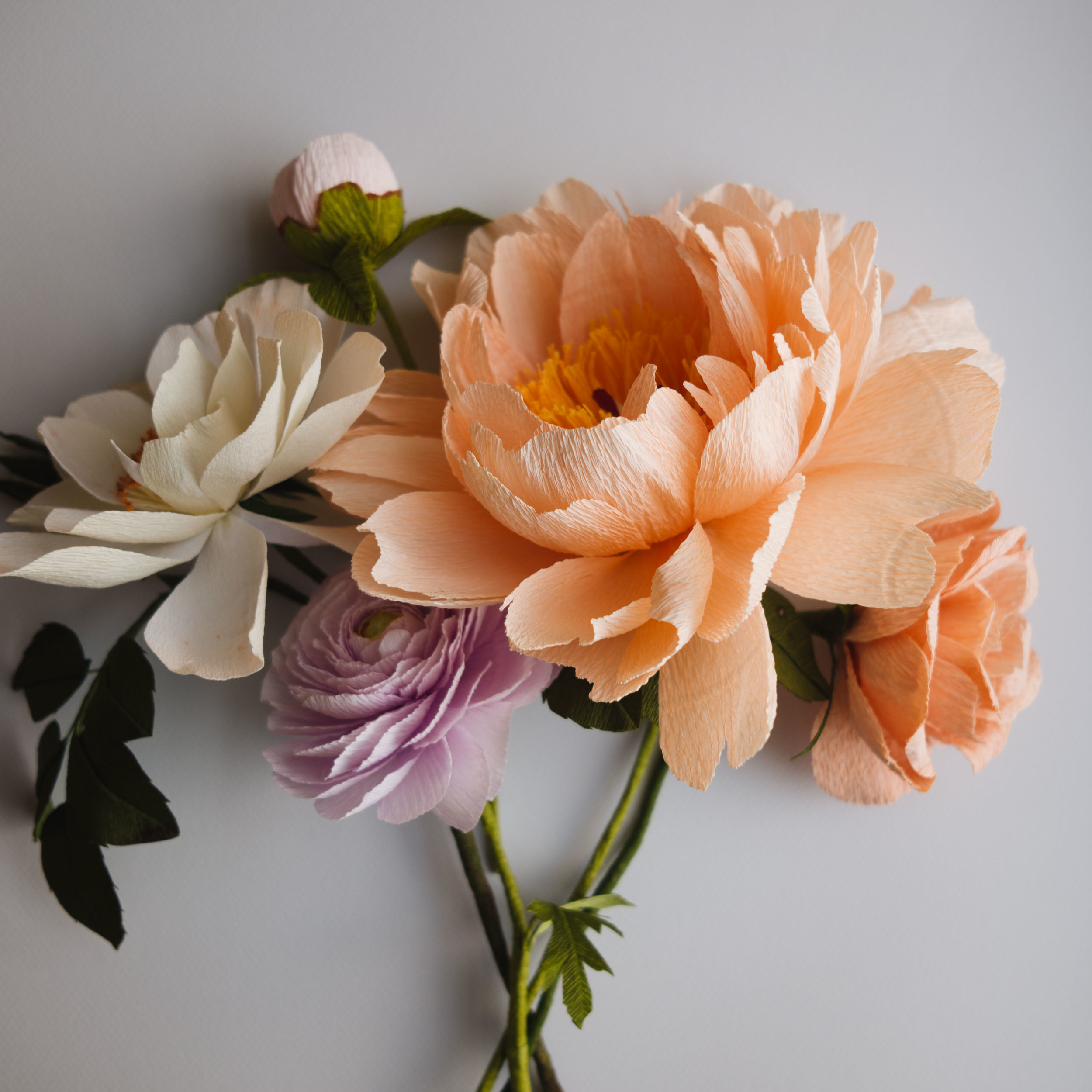 Peony, Rose and Ranunculus