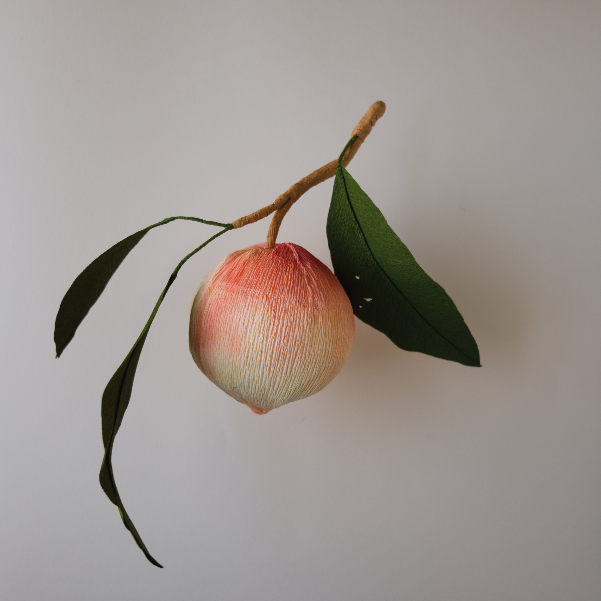 Longevity Peach