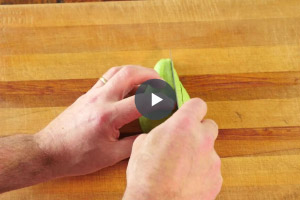 Skills video - Slicing
