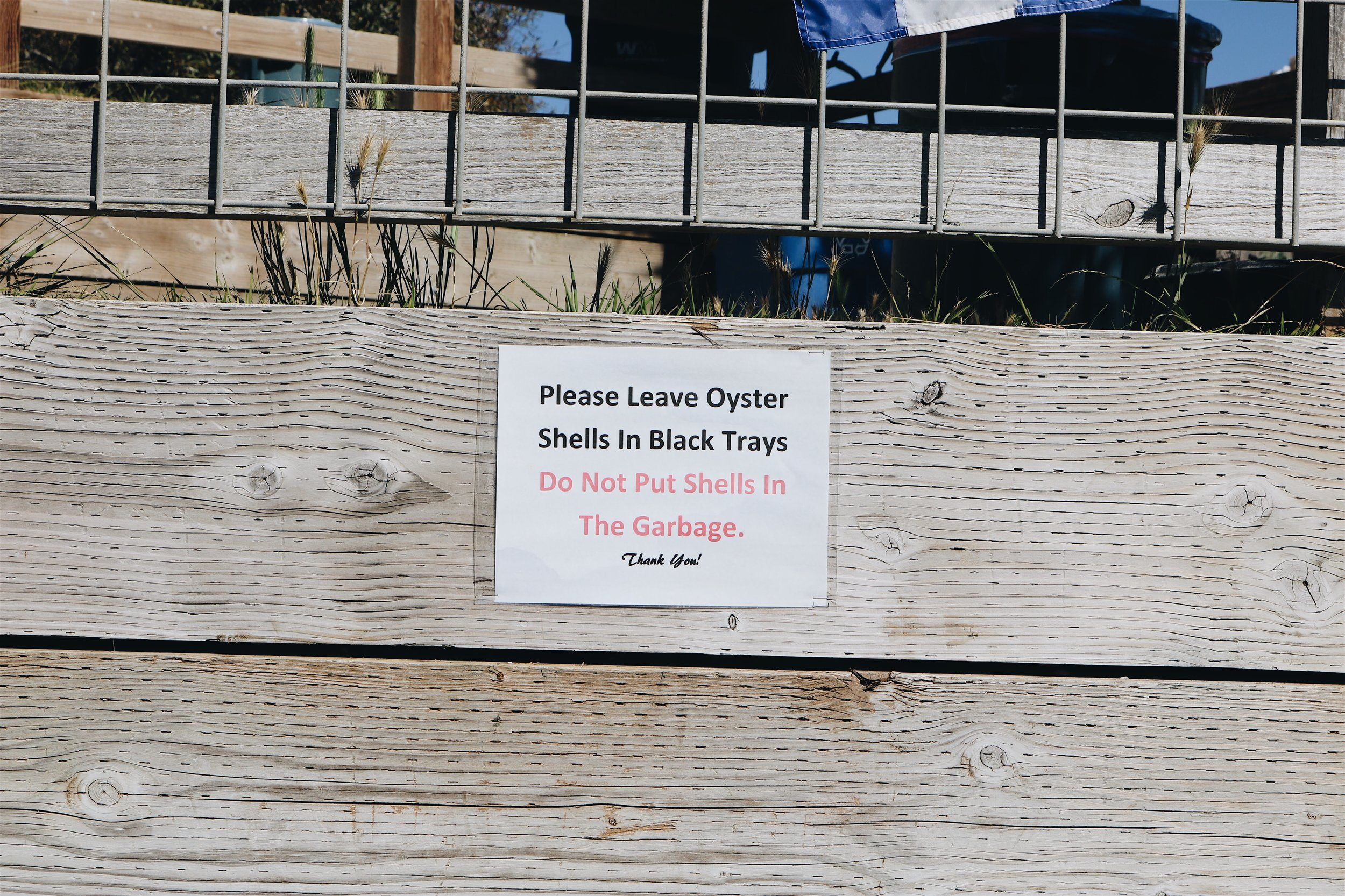 Shuck-Your-Own Oysters in the Bay Area