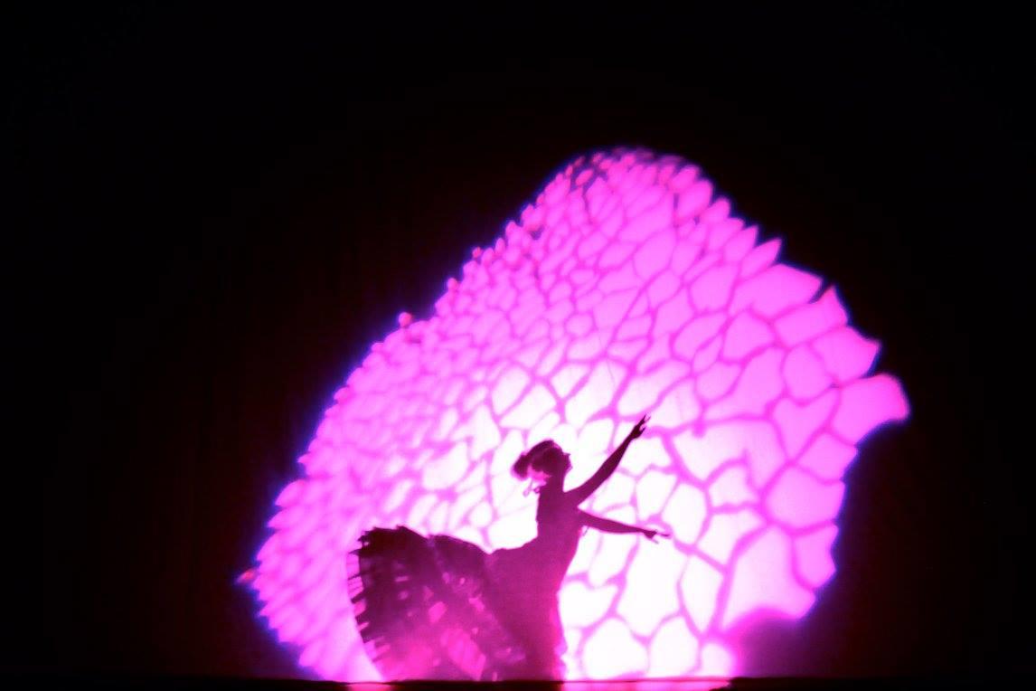 Pitkä matka perhoseksi / Maria Baric Company  2008