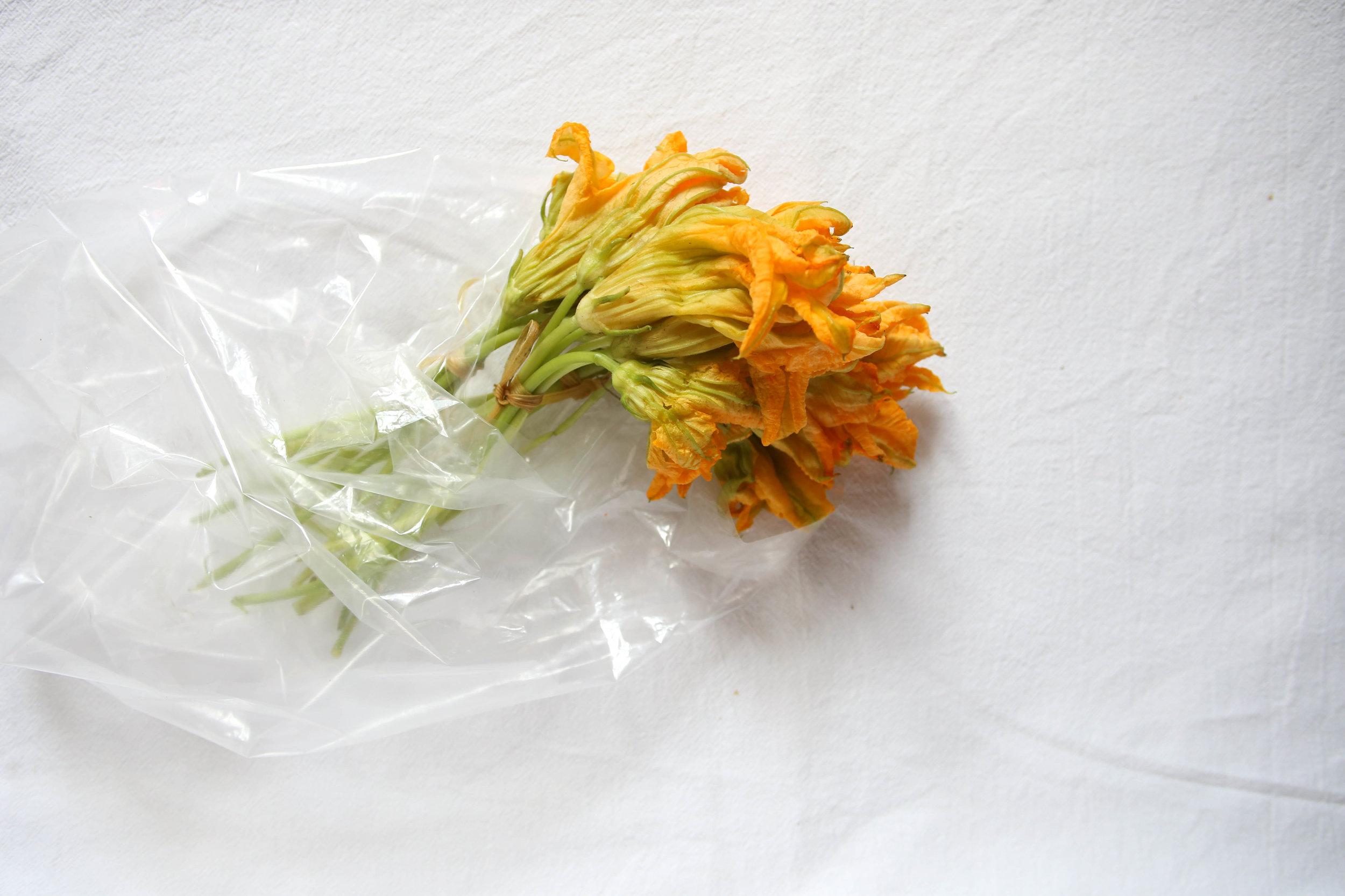 Flor de calabaza (squash blossoms )