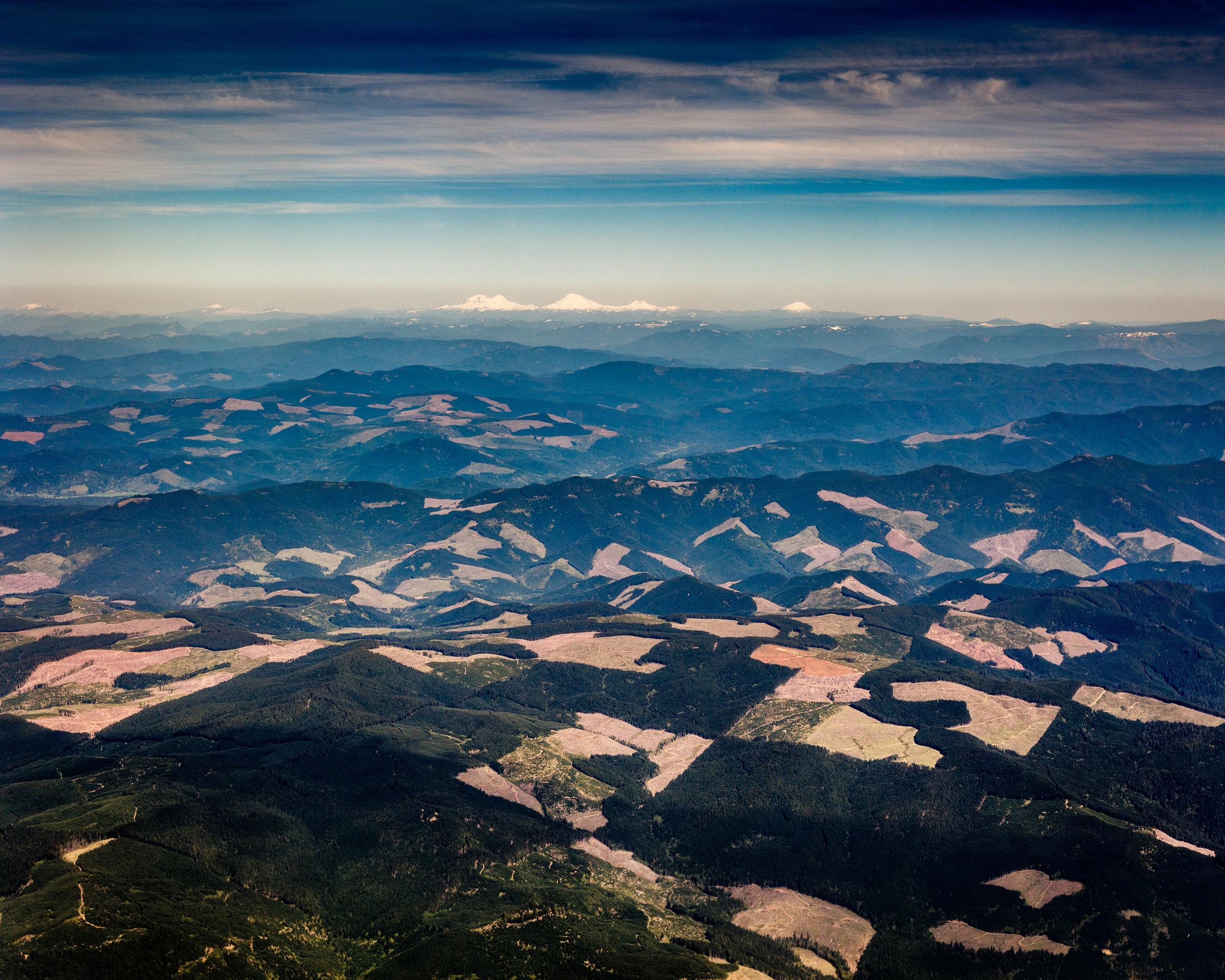 Cascade Mountain Clearcuts near Eugene Oregon