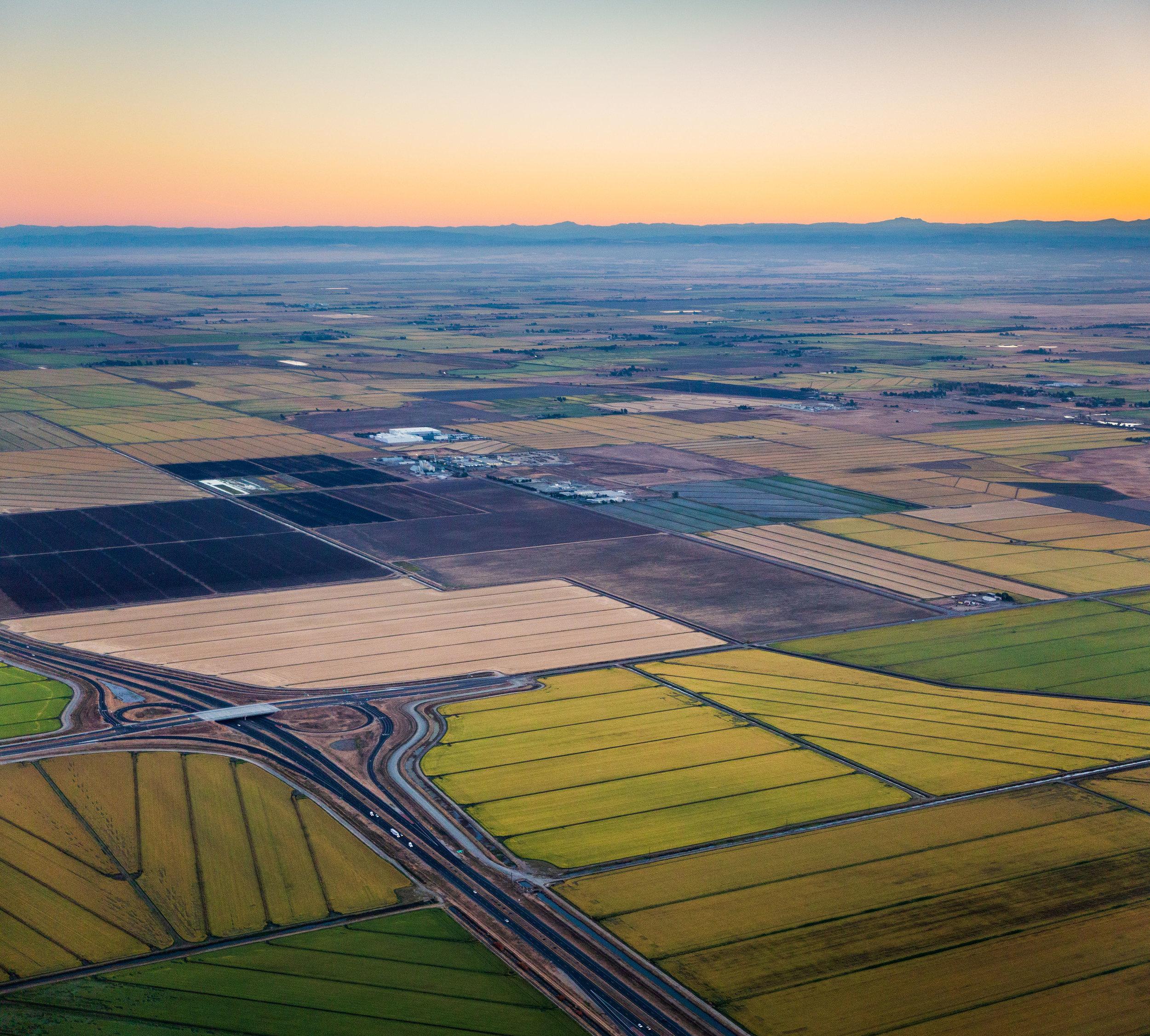 Rice Fields near Sacramento CA