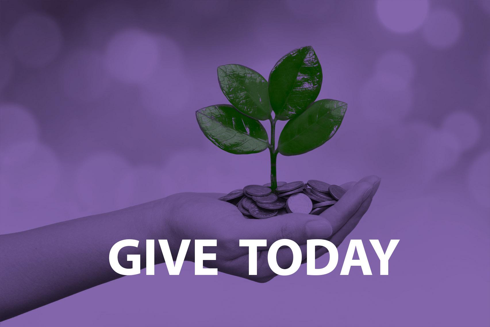 YBHOME-Give.jpg