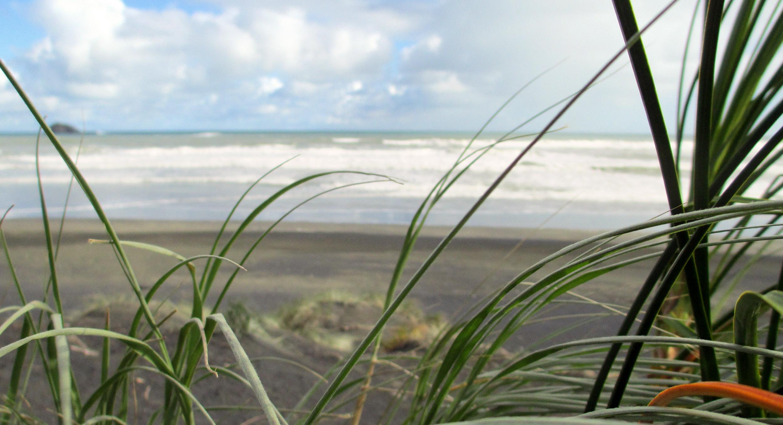 Coastal & Marine