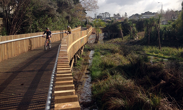 "<div align=""left""><h3>Arthur Mead Environmental Award 2015 Finalist: Morphum Environmental, Auckland Council and Auckland Transport for the Alexandra Stream Enhancement Project</h3></div>"