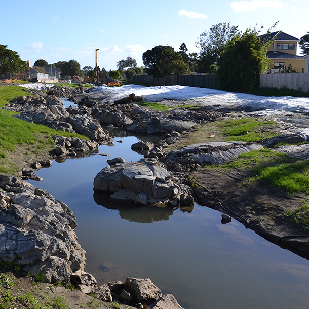 As part of the conference, attendees visited Auckland's Oakley Creek. This is a significant local site which has seen recent restoration work carried out by Auckland Council to mitigate the impacts to the stream from its surrounding urban environment.