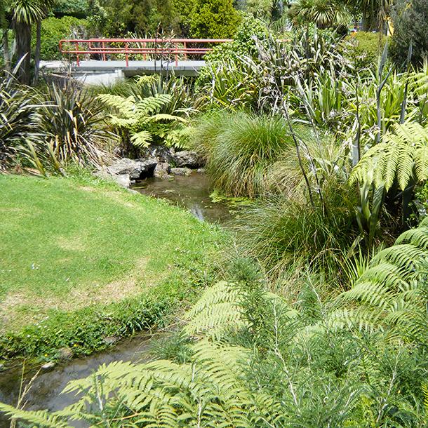 The Wairaka Stream located within Unitec grounds.