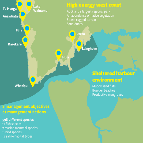 Infographic from cover of Big Blue Waitakere Report.
