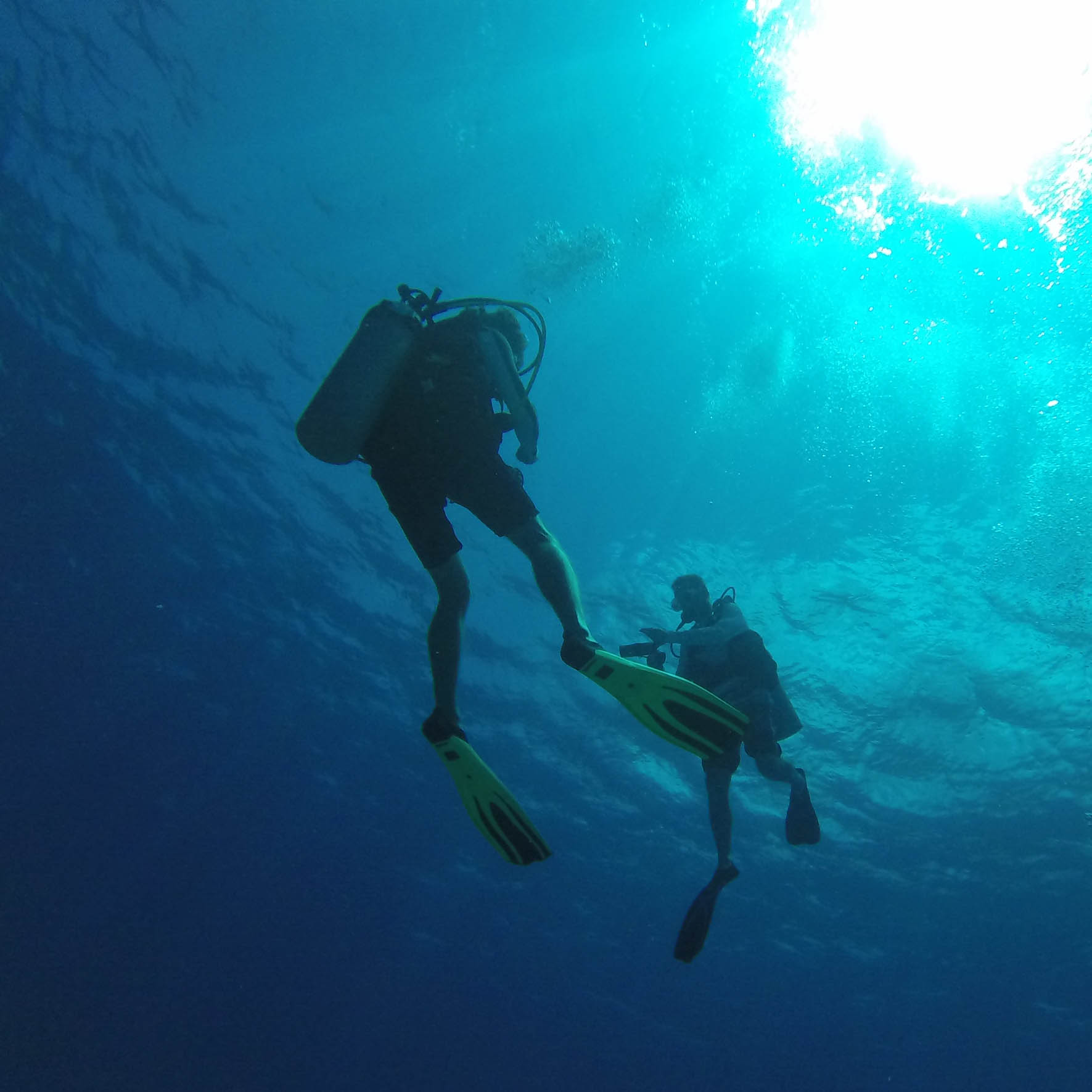 Learn how to help yourself and your fellow divers in, and out of the water with the Rescue Dive certification course.
