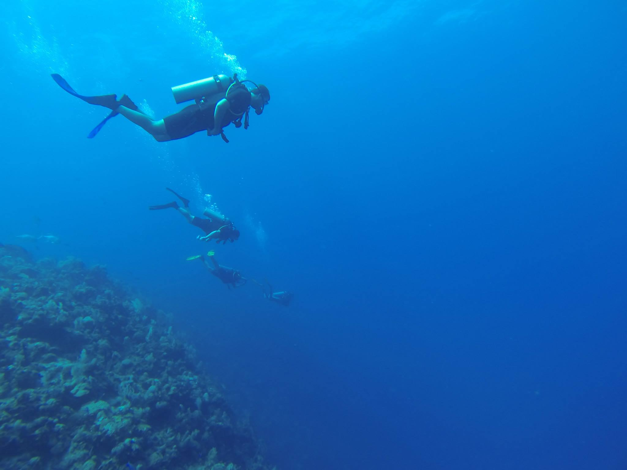 Me and my family, doing some dive travel for the first time together, off the plateau at West End Wall, Roatan, Honduras.