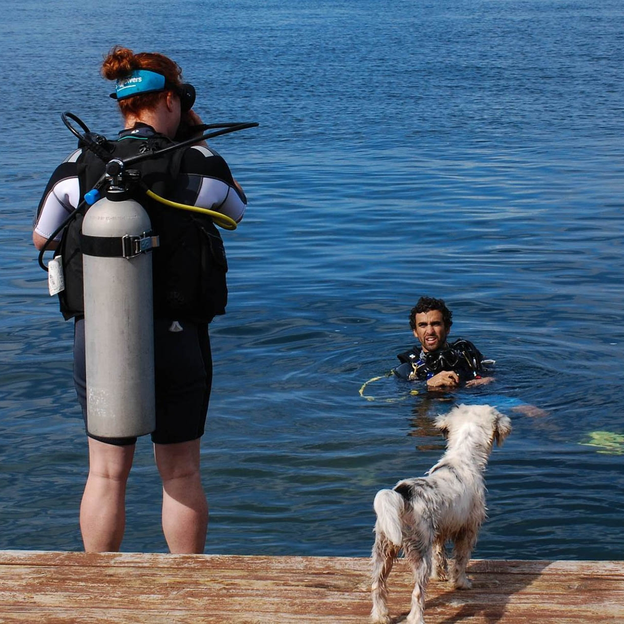 The confined water portion of the open water certification course usually happens in a pool, but if the conditions are right, we can go doggon' anywhere!