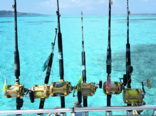Fish for marlin, wahoo, tuna, mahi mahi and others in the deep, rich waters around Roatan, Honduras.