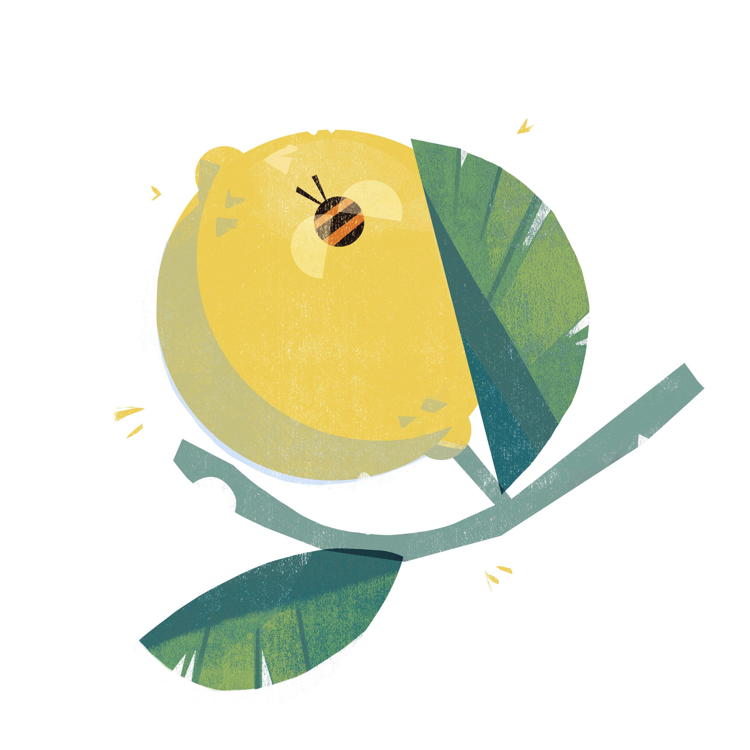 lemon_darker.jpg