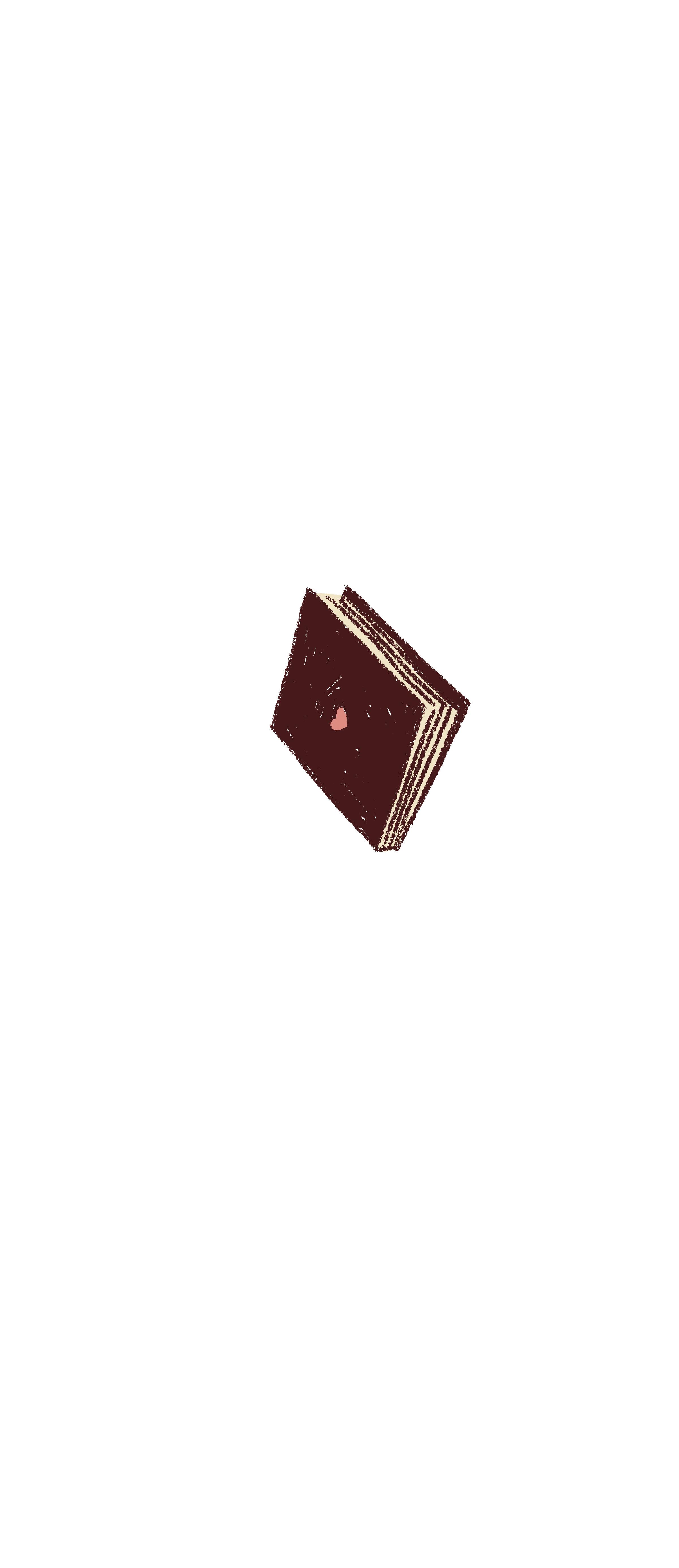 LASTNIGHT_book.jpg