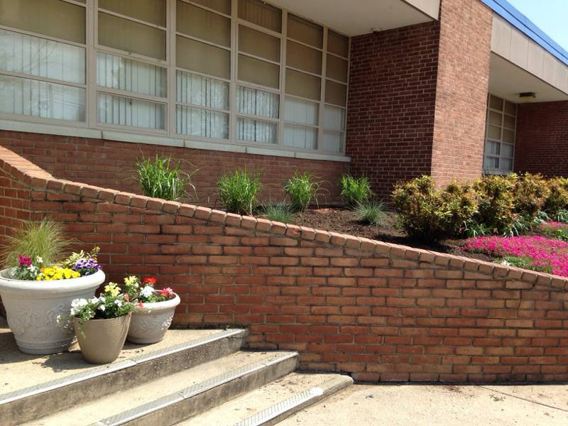 Beautify-Our-School
