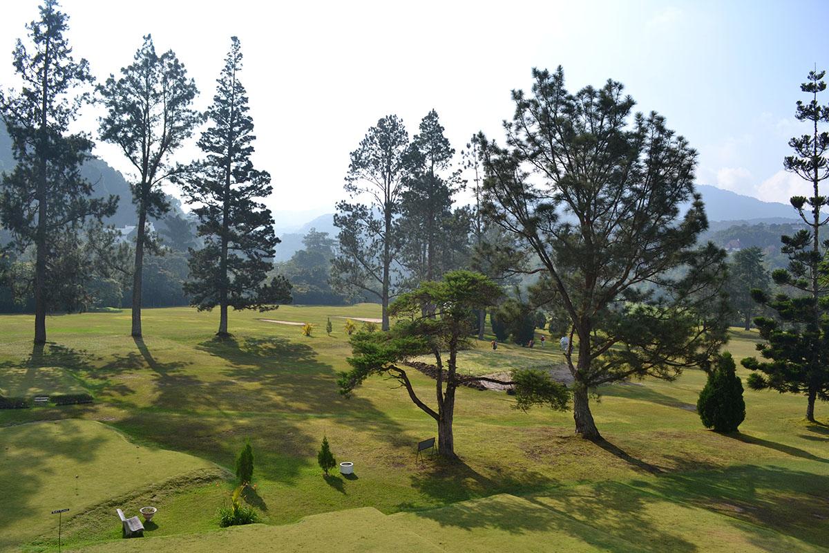 golf-view.jpg