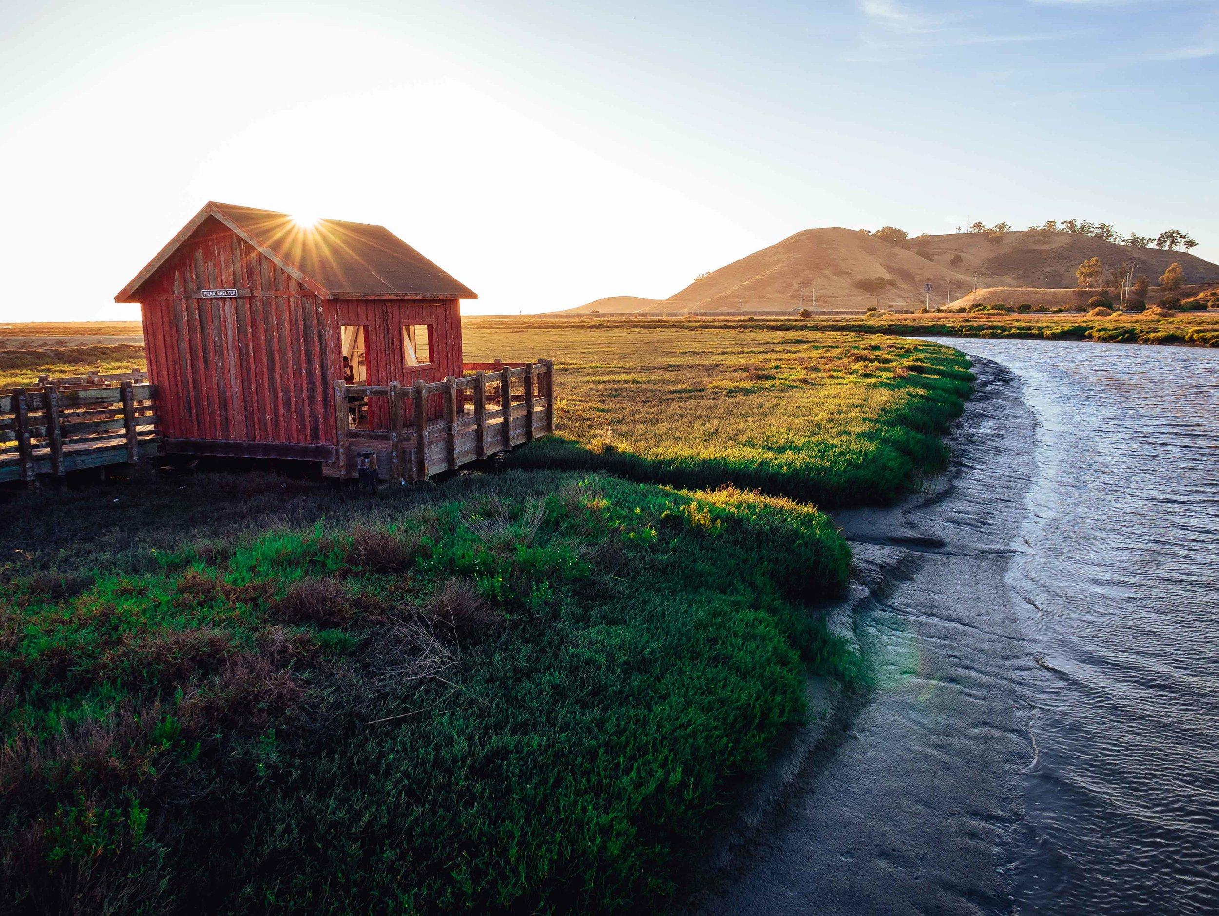 Don Edwards Regional Park, California