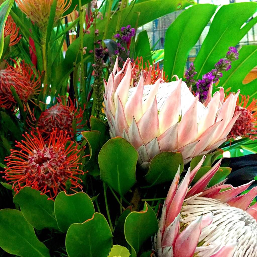 brisarcadeflowers3.JPG