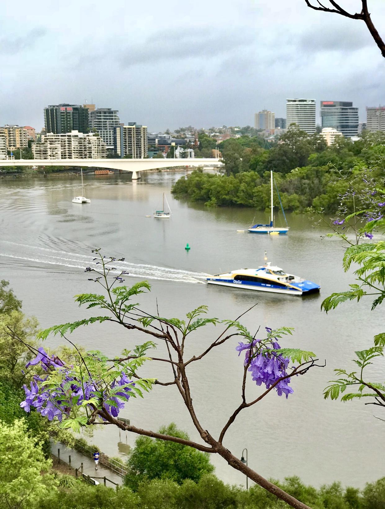 Kangaroo Point Cliffs, Brisbane.