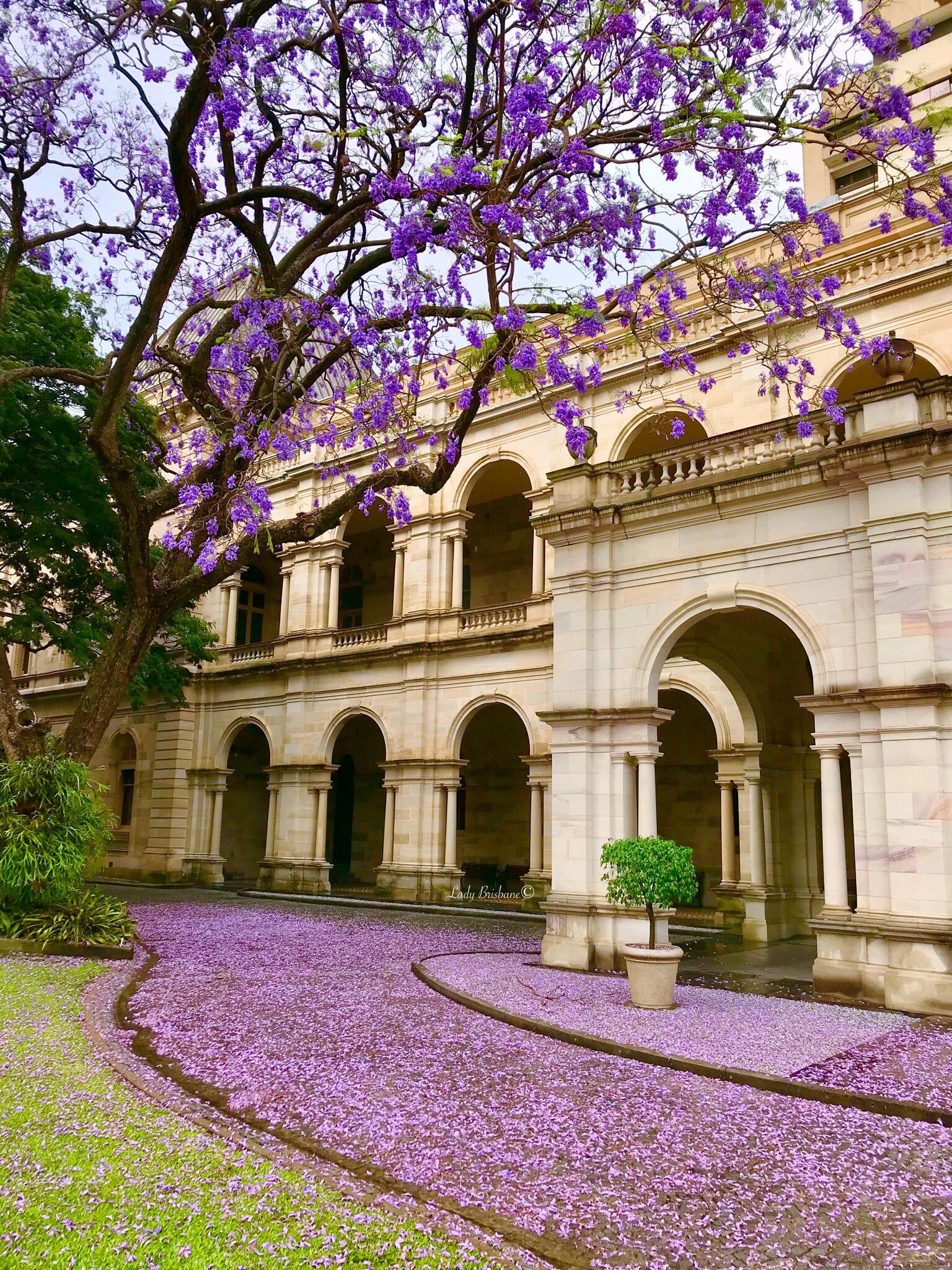Parliament House, Brisbane.
