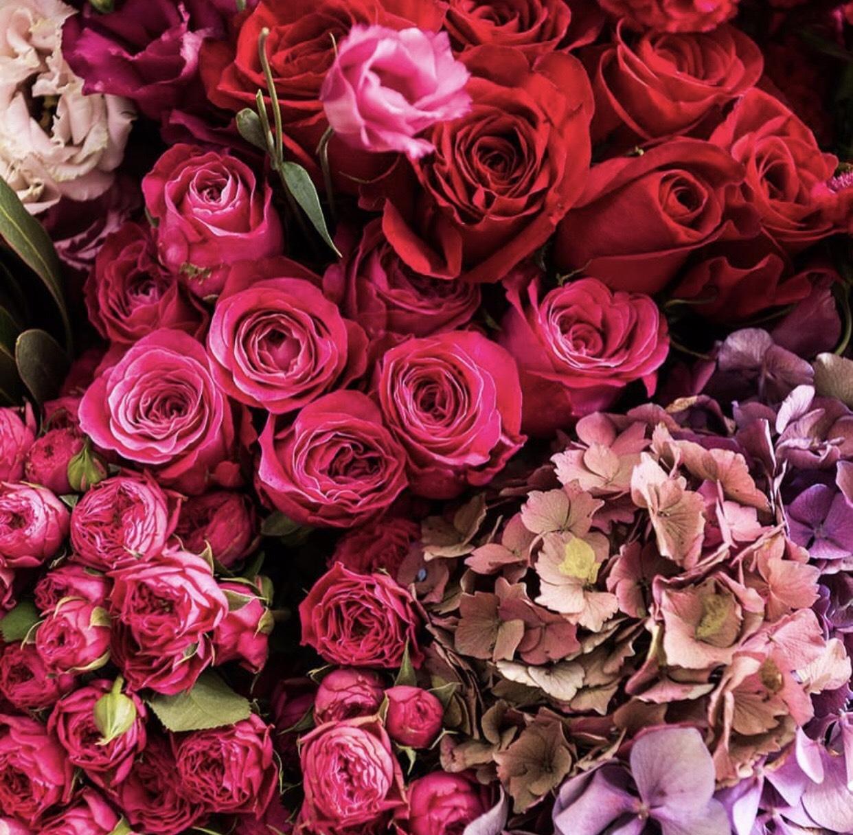 Lady Brisbane Northside Flower Market