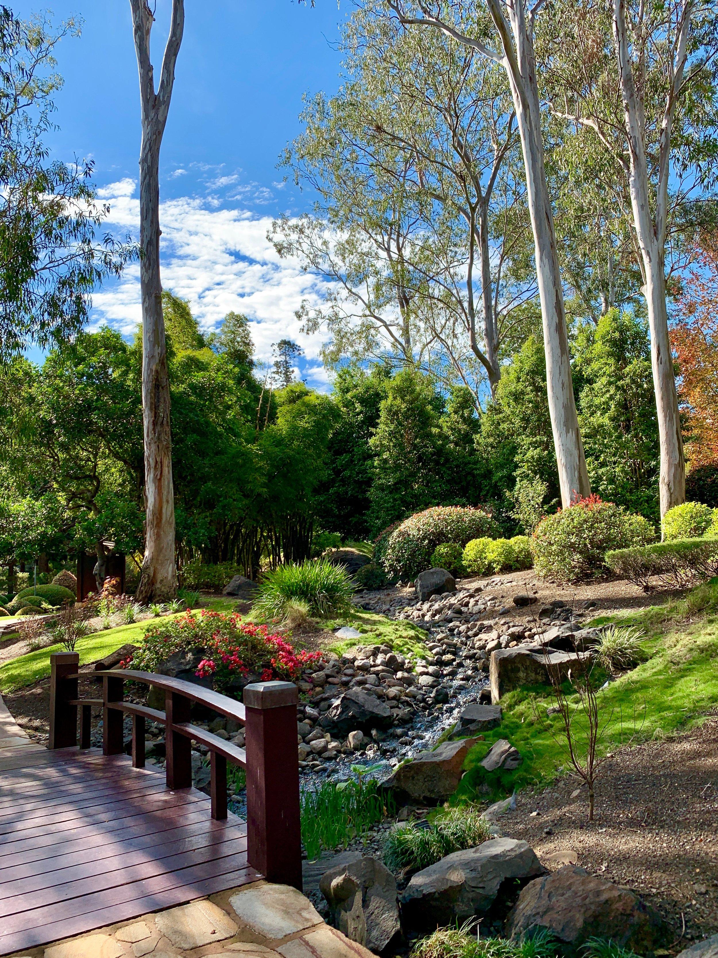 Lady Brisbane Nerima Gardens Ipswich