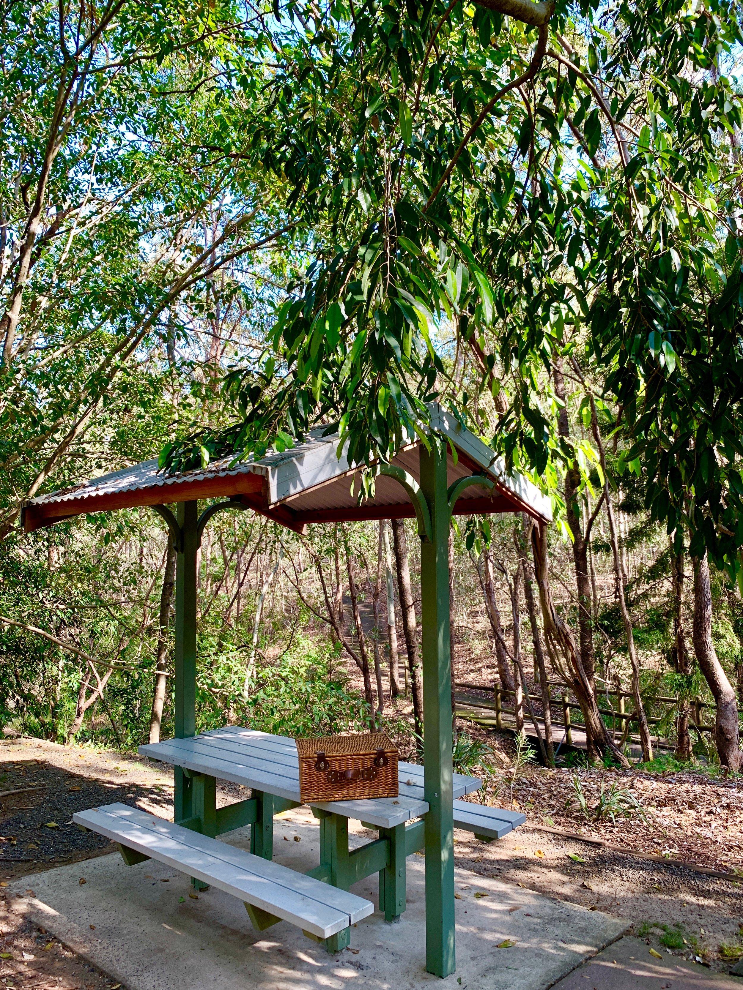 Lady Brisbane Denmark Hill conservation park