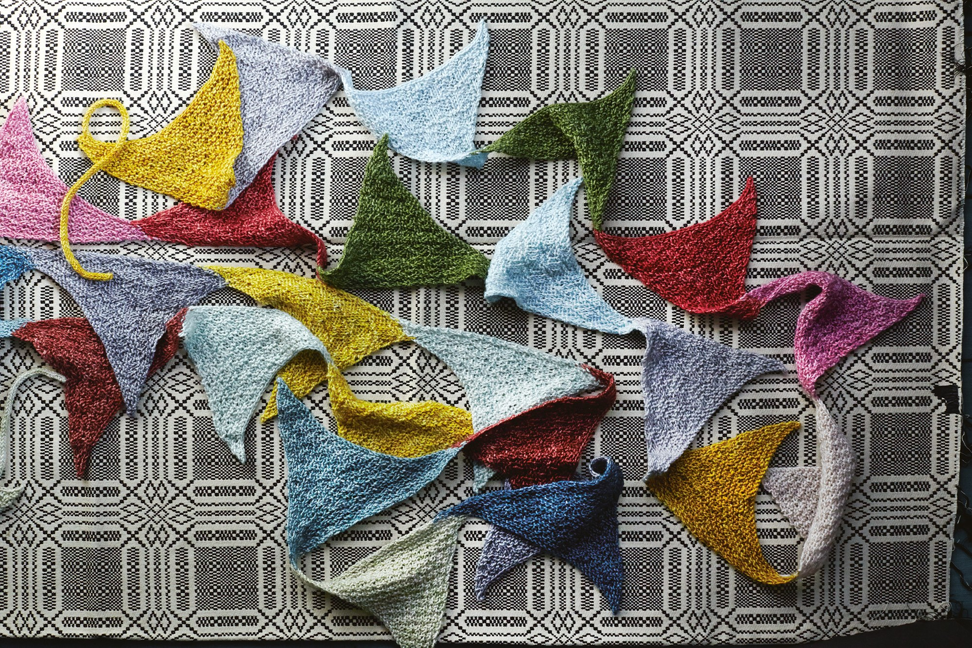 Freak Flags by Cecelia Campochiaro
