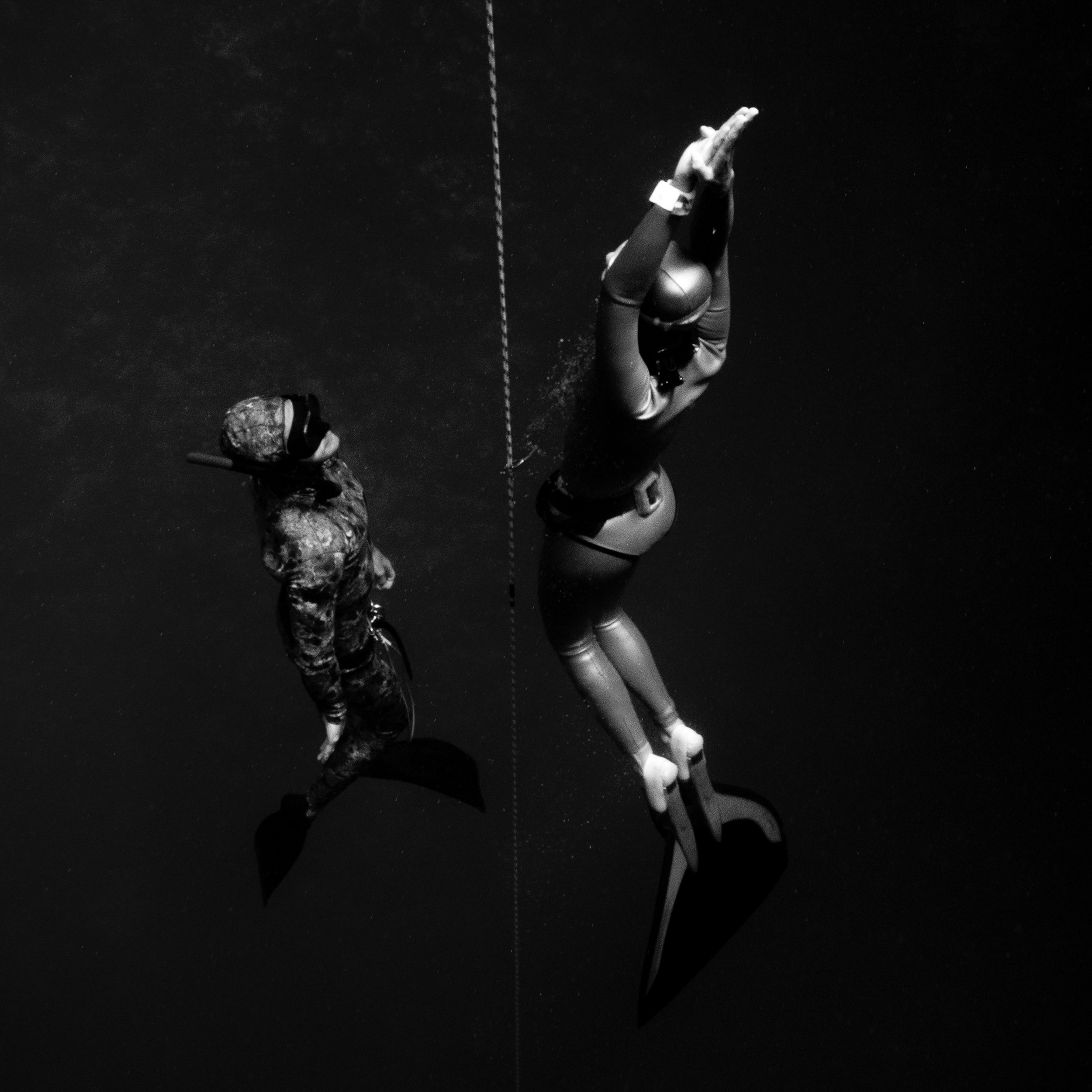 freediving byron bay.jpg