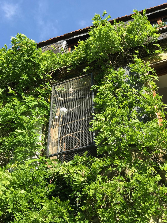 exterior close ss.jpg