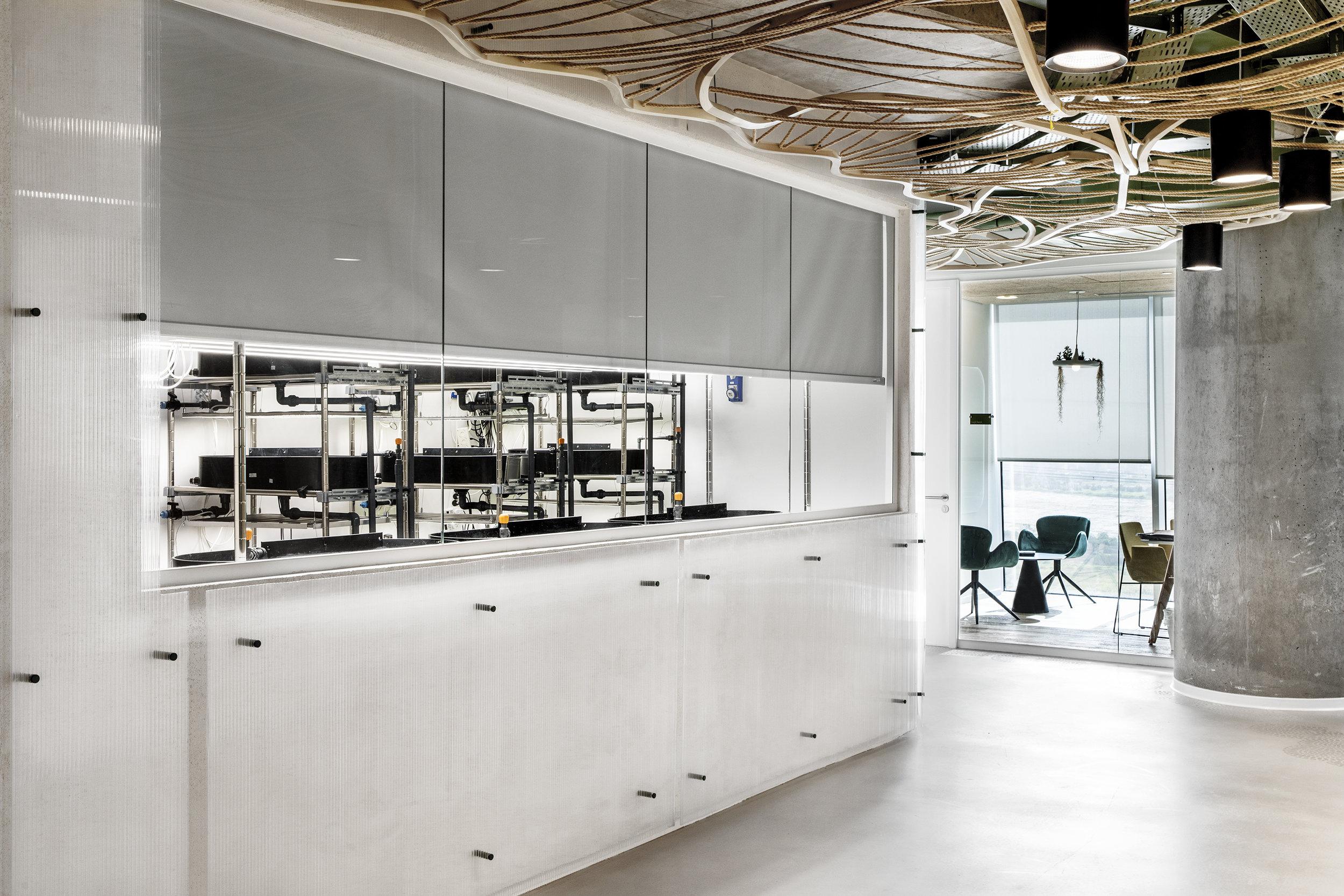 HINNOMAN - ROY DAVID ARCHTECTURE - STUDIO - סטודיו רואי דוד - אדריכלים (30).jpg