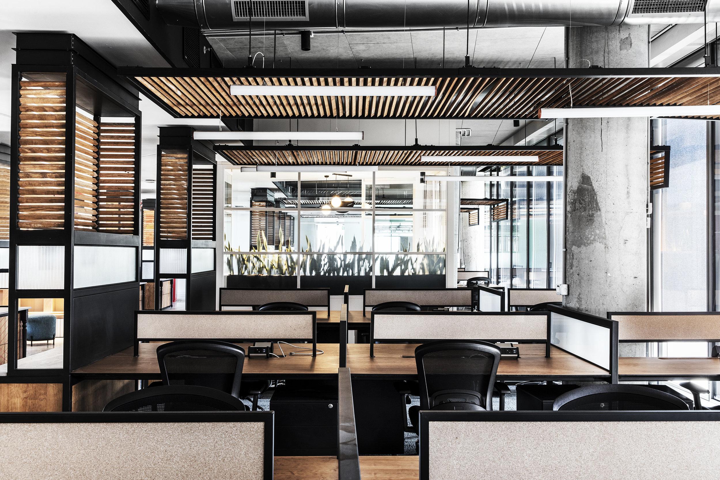 רואי דוד אדריכלות - אדריכל - נטורל אינטליג'נס - ROY DAVID - ARCHITECTURE - ARCHITECT - NI (29).jpg