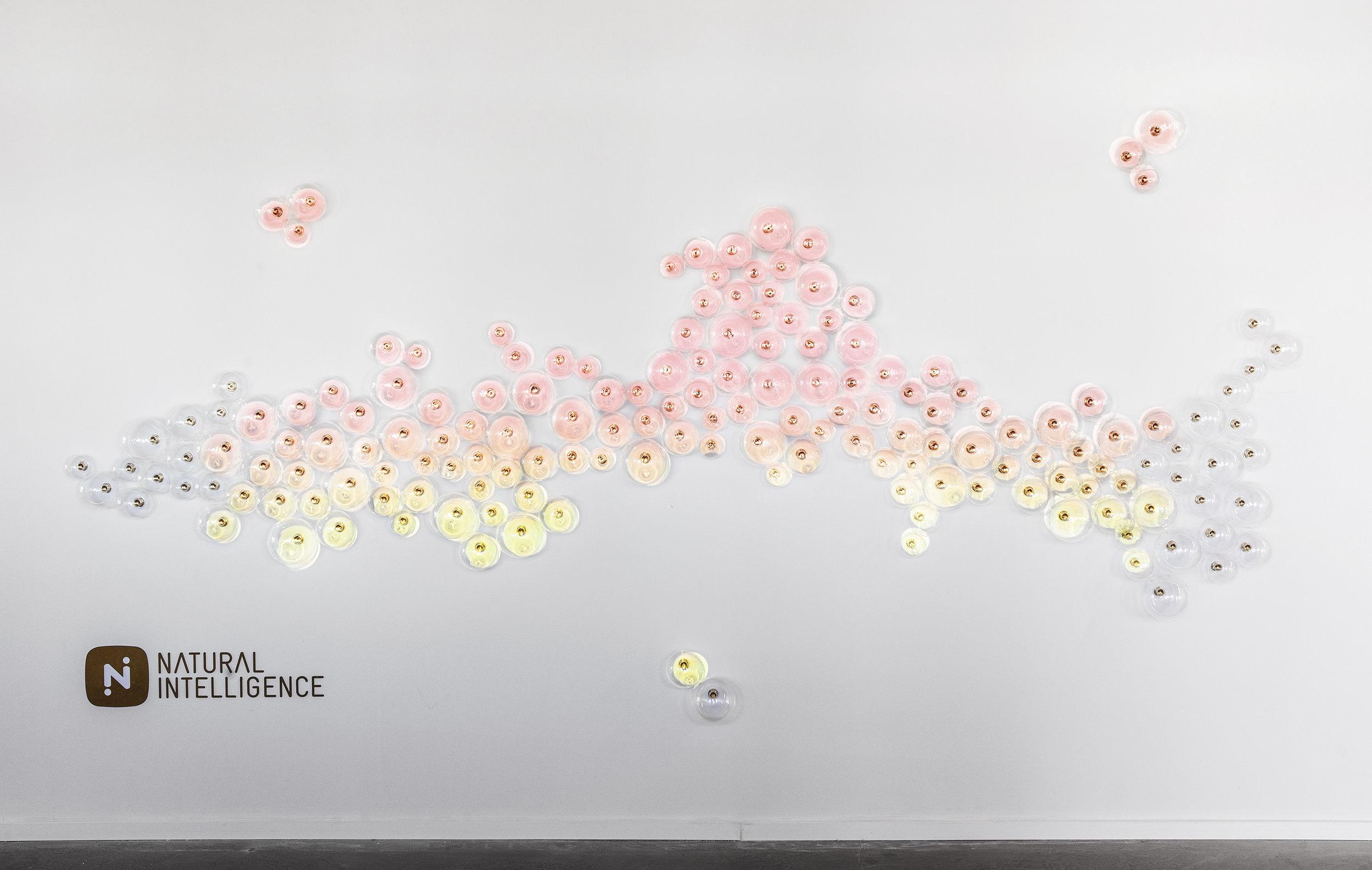 רואי דוד אדריכלות - אדריכל - נטורל אינטליג'נס - ROY DAVID - ARCHITECTURE - ARCHITECT - NI (53).jpg