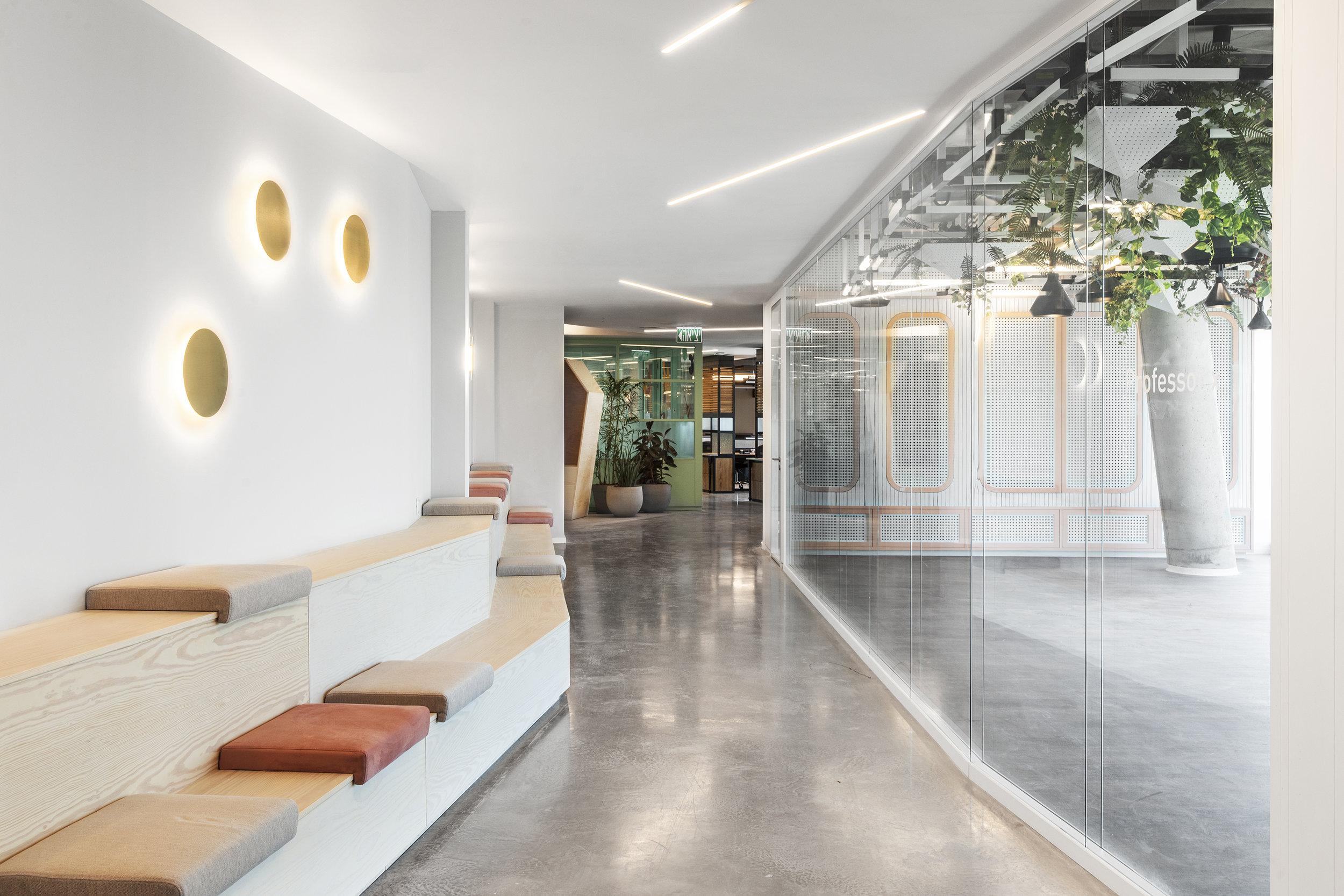 רואי דוד אדריכלות - אדריכל - נטורל אינטליג'נס - ROY DAVID - ARCHITECTURE - ARCHITECT - NI (66).jpg