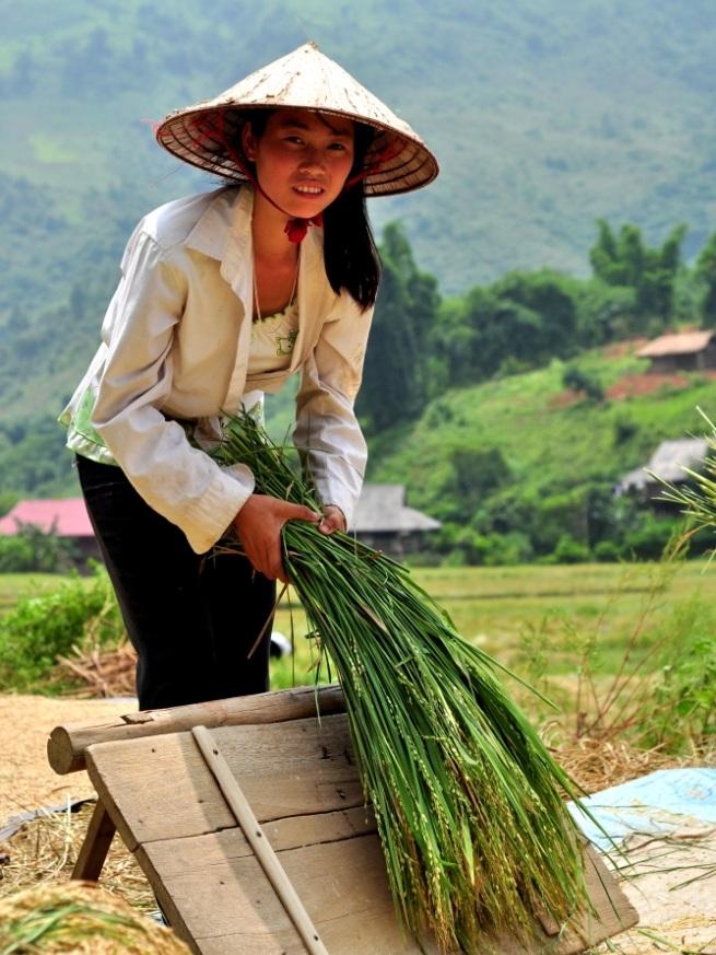 Anh Chị Em - Chương trình tín dụng vi mô - nông nghiệp