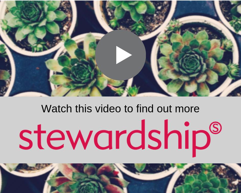 stewardship image.png