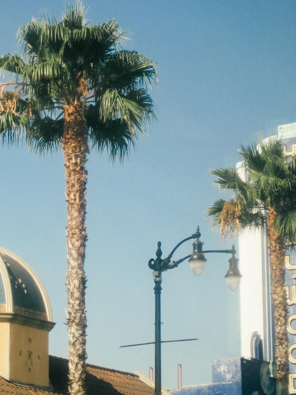 Cali ReEdits-3.jpg